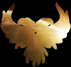 [Image: Crayter_Logo.png]
