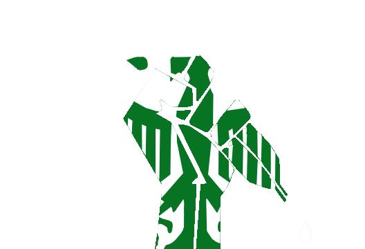 [Image: White_VWA_logo.png]